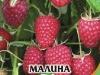 Raspberry_Polka